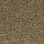 master-carpet